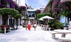Worth Avenue of Palm Beach - Upscale Shopping Center
