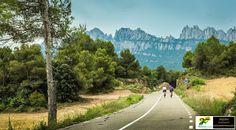 montefusco Ciclismo
