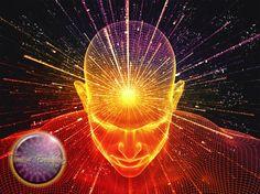 Der Beweis - Wie deine Gedanken die Umwelt verändern - Ein sensationelle...