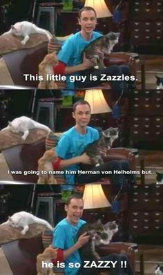 I love Sheldon Cooper!!! This is exactly why I will name my next cat Zazzles!!! My favorite quote!!!