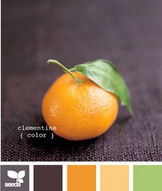 Choosing color to paint my bookshelf in the office. Since I have a black desk, black drafting table, and lots of green accessories, I'm thinking bright, cheerful, clementine orange.