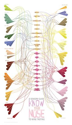 Know Your Nose - Variation on Wine Aroma Wheel | Infographic on Behance