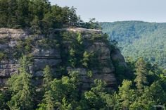 Lookout Point, as seen from the natural bridge - Carved into Stone: the Natural Bridge in Red River Gorge, Kentucky #kentucky #naturalbridge #hike #hiking #takemehiking #redrivergorge #camp #camping #camplife #geology #explore #staywild #adventure #keepexploring #thegreatoutdoors #nikon #nikonphotography #sheadventures #sheexplores #outdoors #OptOutside
