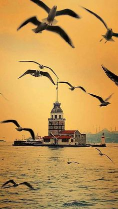 Istanbul, Türkei – Middle Eastern Travel Tips Visit Turkey, Turkey Travel, Istanbul Turkey, Beautiful Sunset, Nature Pictures, Art And Architecture, Amazing Nature, Beautiful Landscapes, The Great Outdoors