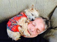 Cachorros espaçosos! Ah, o lugar perfeito para dormir