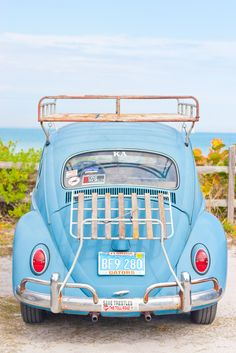 Save Trestles and Fl Gators- east coast west coast VW love