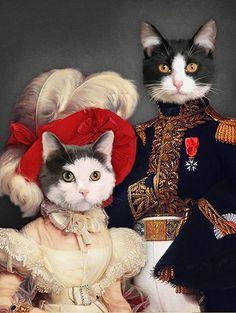 I Love Cats, Crazy Cats, Funny Cute Cats, Wildlife Art, Funny Animal Pictures, Pet Clothes, Beautiful Cats, Pet Portraits, Cat Art