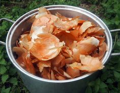 Natural Dyes - Yellow Onion Skins – Folk Fibers - boil and sit for a few days. then reboil and dye prewet fabric. Onion Benefits Health, Tea Benefits, Natural Dye Fabric, Natural Dyeing, Cure Diabetes, Peeling, Healthy Living Tips, Health Remedies, Detox