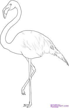Flamingo color page. Print this free Flamingo coloring sheet and craft your own animal coloring book. Flamingo Painting, Flamingo Art, Pink Flamingos, Flamingo Wallpaper, How To Draw Flamingo, Bird Drawings, Animal Drawings, Flamingo Drawings, Drawing Birds