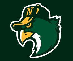 Hawks concept logo