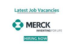 Job Vacancies Jasimjaz888 Profile Pinterest