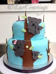 Cute Koala Bear 1st Birthday Cake Hetty S Cake House