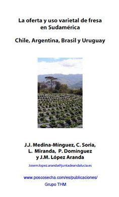 La oferta y uso varietal de fresa en Sudamérica. Por, José Manuel López Aranda (3 €)