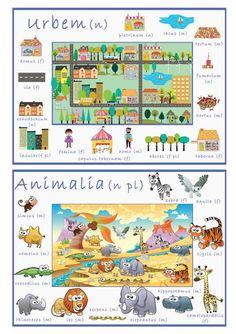 Items similar to Printable Set of 6 Latin Vocabulary Posters on Etsy The Farm, Teaching Latin, Teaching History, Latin Phrases, Latin Words, Latin Grammar, Camelus, Latin Language, Word Poster