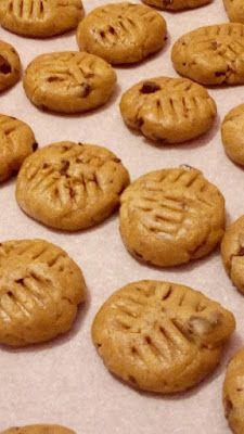 Pignoli (Pine Nut Cookies) Recipe - Holiday wreaths christmas,Holiday crafts for kids to make,Holiday cookies christmas, Holiday Cookie Recipes, Holiday Cookies, Holiday Baking, Holiday Crafts For Kids, Crafts For Kids To Make, Pine Nut Cookies Recipe, Pignoli Cookies, Meringue Cookies, Royal Icing