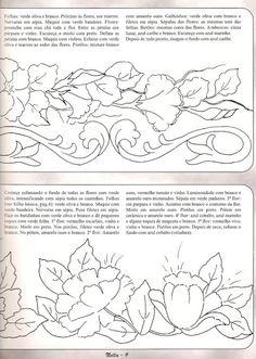 BARRADOS NELLA - Lidia Arte - Picasa Web Albums