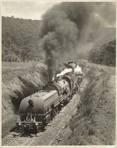 Class AD6002 'Garratt' locomotive enroute between Emu Plains-Lapstone/Glenbrook as part of a trial run. Dated: 21/11/1952 Digital ID: 17420_a014_a014000241 Rights: www.records.nsw.gov.au/about-us/rights-and-permissions