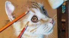 Find all the drawing supplies you need to succeed on Sandra's Favorites list.