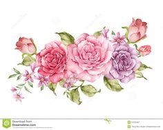 watercolor-illustration-flower-set-simple-white-background-51532467.jpg (1300×1043)