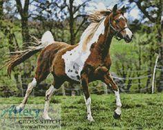 Artecy Cross Stitch. Arabian Horse Counted Cross Stitch Pattern to print online.