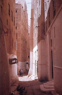 Yemeni street. I love how it's not perfectly straight. The whitewashing of the first floor makes a pleasing contrast to the natural stone. The feet of the buildings flare a little here and there, as if they grew in place rather than being built