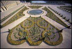 Château de Versailles - Décorations de buis sur le parterre du Midi dessiné par Le Nôtre avec, au premier plan, la fleur de lys, symbole de la royauté. Au fond, l'Orangerie et la pièce d'eau des Suisses.