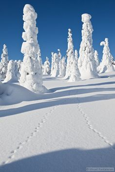 Posio, Finland in winter time by Mikael Rantalainen