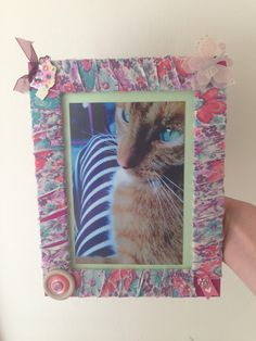 Homemade photo frame of my ginger cat