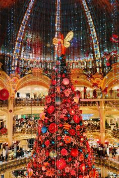 Paris Winter, Christmas In Paris, Christmas Tree, Christmas Markets, Magical Christmas, Winter Time, Beautiful Paris, Beautiful World, Paris Travel
