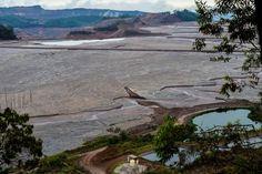 Fauna do rio Doce em Minas acabou, diz Izabella Teixeira