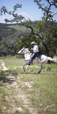 Top things to do in Texas - Lonely Planet