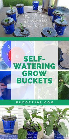 Dirt Cheap Grow Buckets | Homemade Budget Hydroponic System