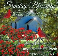 Sunday Blessings With Bible Verse sunday sunday quotes happy sunday sunday blessings religious sunday quotes sunday quote happy sunday quotes sunday blessings quotes sunday quotes with bible verse Blessed Sunday Quotes, Blessed Sunday Morning, Sunday Morning Quotes, Sunday Prayer, Morning Blessings, Good Morning Picture, Morning Prayers, Good Morning Good Night, Morning Pictures