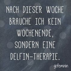Delfin-Therapie!?