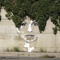 street art meets nature