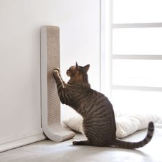 """4CLAWS Wall Mounted Scratching Post 26"""" #cat, #fun, #scratch"""