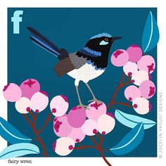 F for fairy wren and Friday 😊 Floral Illustrations, Illustration Art, Cartoon Birds, Australian Birds, Animal Alphabet, Unique Animals, Wedding Art, Abstract Flowers, Bird Art