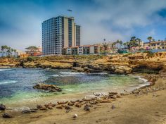 15. The village of La Jolla in San Diego, California, is home to La Jolla Cove Beach, whose waters — filled with colorful fish, stingrays, and leopard sharks — are a snorkeler's and diver's paradise.