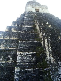 Tikal Out Of Place Artifacts, Maya Civilization, Tikal, Archaeological Site, National Parks, World, Places, Outdoor, Outdoors