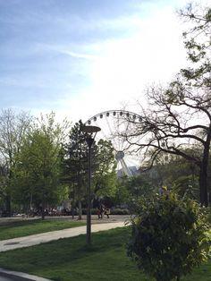 Ferris wheel @Deak Ferenc square