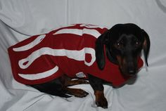 Bacon Costume comes in 5 sizes xxxsmall to by DownUnderDogDesigns, $35.00