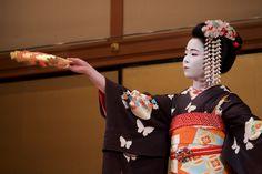 Maiko Umekana (Kamishichiken) October 2016 芸妓さんと舞妓さんのブログ : 画像
