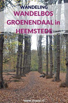 Ik maakte een herfstwandeling in Wandelbos Groenendaal in Heemstede. Meer informatie over Wandelbos Groenendaal en mijn wandelroute lees je in dit artikel. Loop je mee? #wandelen #wandelbosgroenendaal #heemstede #jtravel #jtravelblog