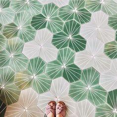 Dandelion cement tiles flowers