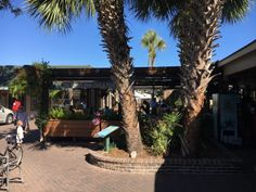 The Frosty Frog Cafe on Hilton Head is one of those can't miss restaurants. Its location naturally lends it to a beachy theme that makes this experience of dining out fun for the entire family.