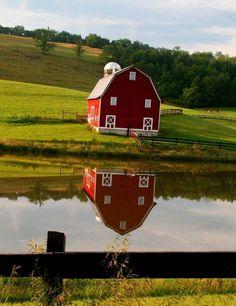 Red Barn Reflection Edray Rd - Pixdaus