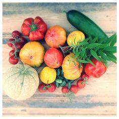 1 oktober: de #moestuin weet van geen ophouden. Love it! #garden