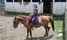 Sob o lombo do cavalo