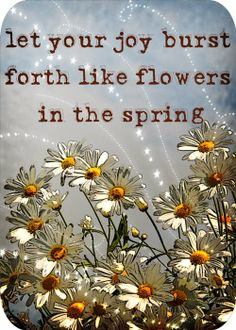 Let your joy burst forth like flowers in the spring   Inspirational Quotes