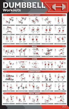 Fitness Workouts, Gym Workouts For Men, Home Gym Exercises, Gym Workout For Beginners, Weight Training Workouts, Fitness Weightloss, Dumbbell Workout Routine, Gym Workout Chart, Gym Workout Tips
